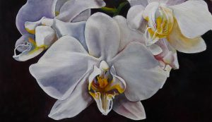 Wild Orchids by Amy Denny