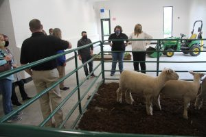 Faculty and staff tour multipurpose room with sheep pen